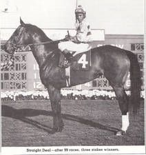 Straight Deal(1962)(Filly)Hail To Reason- No Fiddling By King Cole. 4x5 To Teddy, 5x5 To Pharos & Plucky Liege. 99 Starts 21 Wins 21 Seconds 9 Thirds. $733,020. Won Hollywood Oaks, Ladies H, Firenze H, Santa Margarita H, Sheepshead Bay H, Santa Barbara H, Bed O' Roses(Twice), Delaware H, Spinister S, Top Flight H, Vineland H, Orchid H, 2nd Firenze H, Diana H(Twice), Post Deb S, Beldame S, Ladies H.