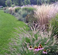 With a nod to garden designer Piet Oudolf, we planted this 50-foot border of perennial grasses, mixed with rudbeckia and echinacea for extra color. If you want a dramatic, easy-care display of plants, its hard to beat ornamental grasses.