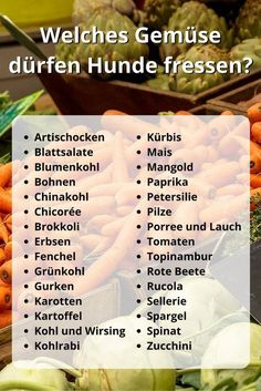 What vegetables can dogs eat? 33 gesunde Gemüsesorten – Welches What vegetables can dogs eat? 33 healthy vegetables – which one allowed to eat? 30 vegetables that are healthy – to - Dog Pitbull, Beagle, Boxer, Diy Pet, Vegetable Animals, Cat Dog, Maila, Can Dogs Eat, Young Animal