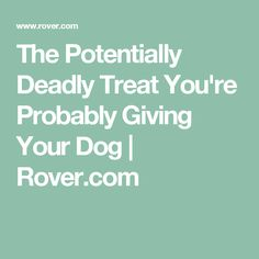 The Potentially Deadly Treat You're Probably Giving Your Dog | Rover.com
