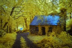 Old derelict cottage near Stradbally, Ireland. IR Photo by Owen O'Grady