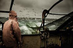 EU beschließt Nordsee-Fangmengen für 2010    ***  Insbesondere die Kabeljau-Bestände werden dabei eine Rolle spielen, sowie eine neue Fischerei-Verodnung, nach der eine europaweite Fischereibehörde eingerichtet werden soll. Ob künftig auch die Freizeit- #fishing  Click the on the pic for more info.  http://www.bamboonets.com