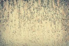 #abstract #backdrop #background #blank #brush #cement #color #concrete #design #detail #dirty #dripping #graffiti #grunge #grungy #old #paint #pattern #retro #splash #splatter #stain #stucco #surface #texture #textured #ur