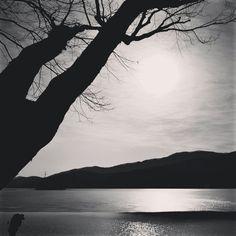 아침을 맞이하는 사람... 두물머리에서... #두물머리 #travel #tree #photographer #사진 #사진가 #여행 #나무