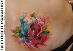 watercolor rose by dopeindulgence on DeviantArt