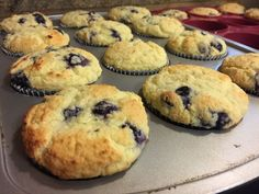 Blueberry Muffins (This post contains affiliate links. It costs you nothing extra but helps support my blog when you order through my links. Thank you so much!)  Well, I wasn't going to do any more baking for a while. Then we get back from an awesome Homeschool Convention (Teach Them Diligently in Dallas) and...Read More