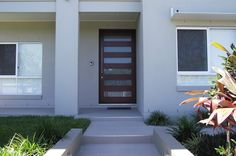 Modern 6 LT dark timber front entry pivot door with steel handle and obscured glazing