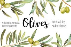 Olives watercolor illustration set by AnnelyBlooms on @creativemarket