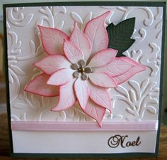pink poinsettia - Google Search