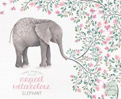 Watercolor elephant: hand painted elephant clipart / nursery art / animal clip art / childrens birthday / baby birth announcement / CM0084 by LisaGlanzGraphics on Etsy https://www.etsy.com/listing/287712553/watercolor-elephant-hand-painted