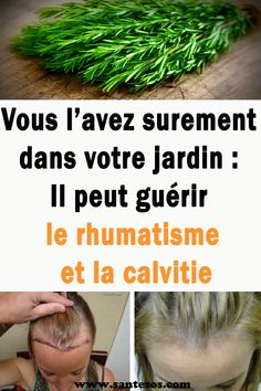 Vous l'avez surement dans votre jardin : Il peut guérir le rhumatisme et la calvitie #rhumatisme #Jardin #herbe #romarin #calvitie #rhumatisme Horticulture, The Cure, Health Fitness, Medical, Cosmetics, Hair, Beauty, Soigne, Zen
