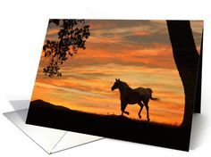 thinking about you horse in sunset card Inside: Just wanted to let you know you were on my mind ...