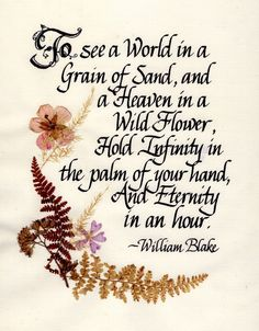 """""""To see a World in a Grain of Sand, and a Heaven in a Wild Flower, Hold Infinity in the palm of your hand, And Eternity in an hour."""" - William Blake"""