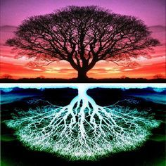 Iuhan Full Drilled Tree Diamond Painting Kits for Adults and Kids, DIY Life of Tree Embroidery Paintings Rhinestone Diamond Painting Kits Pasted DIY Diamond Painting Cross Mother Earth, Mother Nature, Frida Art, Tree Art, Sacred Geometry, Feng Shui, Paths, Scenery, Landscape