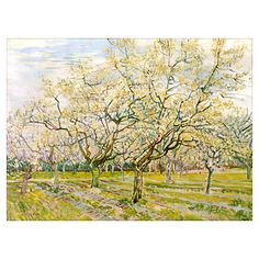 "Van Gogh ""The White Orchard"" Poster"