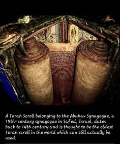 century Torah Scroll - in century synagogue in Safed, Israel . believed to be the oldest scroll still in use.