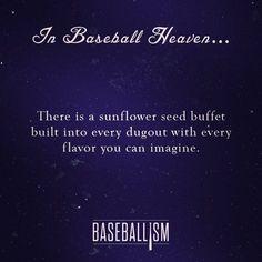 Not just baseball. Softball heaven too No Crying In Baseball, Baseball Boys, Baseball Stuff, Baseball Party, Football, Baseball Sayings, Travel Baseball, Baseball Sister, Giants Baseball