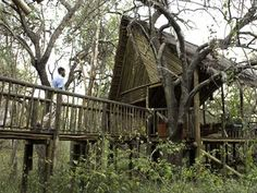 African Treehouse Lodge