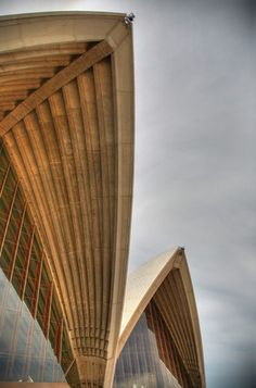 sydney opera house~what a cool angle! i never would've known it was this wood-stuff underneath ( i think it's wood?)