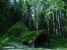 Ein Waldhaus