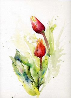 tulips watercolor by  Marisa Padovan, via Flickr