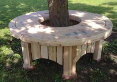 Eco Tree Seat - outdoor furniture for schools and gardens in various sizes