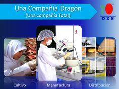 dxncompañia.png (568×428)
