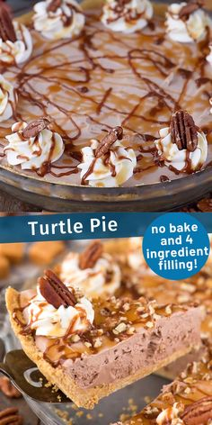 Easy to make classic turtle pie! This no bake turtle pie has a 4 ingredient filling that is creamy and rich. Add pecans, caramel and chocolate sauce and you have a quick homemade turtle pie! recipes videos no bake No Bake Turtle Pie Easy Pie Recipes, Easy No Bake Desserts, Köstliche Desserts, Baking Recipes, Sweet Recipes, Cookie Recipes, Delicious Desserts, Dessert Recipes, Health Desserts
