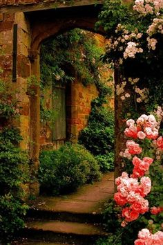 Cottage Landscape/Yard with Arbor, Arched doorway, Dark and Light Pink Peony Seeds (20 Seed Pack), Historic home