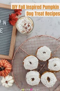 The weather's getting cooler, the leaves are starting to change color, and your favorite coffee shops have released their fall menus. Fall is known for its very distinct flavors like cinnamon, maple, Pumpkin Dog Treats, Diy Dog Treats, Diy Pumpkin, Baked Pumpkin, Dog Treat Recipes, Pumpkin Spice Latte, Cute Dog Toys, Cute Dogs, Fall Menus