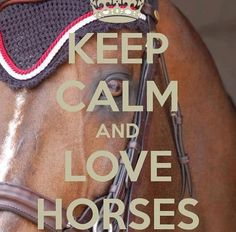 KEEP CALM AND LOVE HORSES. Another original poster design created with the Keep Calm-o-matic. Buy this design or create your own original Keep Calm design now. Pretty Horses, Horse Love, Horse Girl, Beautiful Horses, Inspirational Horse Quotes, Horse Riding Quotes, Equestrian Quotes, Horse Wallpaper, All About Horses