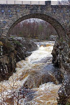 Bridge at Forest Walks., Scotland