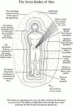 The Seven Bodies of Man energy art energy auras energy consciousness energy good vibes energy spirit science energy universe Meditation Musik, Chakra Meditation, Chakra Healing, Spiritual Meditation, Kundalini, Les Chakras, Mudras, Spirit Science, Mind Body Soul