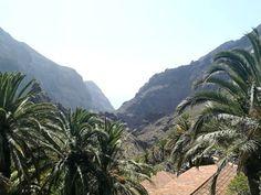 Masca on upea luonnonkaunis laakso komeiden vuorten keskellä Teneriffalla. Laaksoon vievät kapeat serpentiinitiet ovat ainoa reitti nähdä tämä saaren helmi. Lue lisää blogista! // www.kookospalmunalla.fi // Masca is a wonderful naturally beautiful valley in the middle of massive mountains in Tenerife. The narrow serpentine roads are the only way to reach the valley and the most beautiful spot on the island. More on blog! // #masca #tenerife #teneriffa #kookospalmunallablog #matkablogi Naturally Beautiful, Most Beautiful, To Reach, Canary Islands, Roads, Safari, Middle, Mountains, Nature