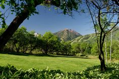 Front Row & Furnished on Starwood, Aspen, 876 South Starwood Drive, Aspen, Colorado, 81611 - page: 1 #mansion #dreamhome #dream #luxury http://mansionhomes.co/dream/front-row-furnished-in-starwood-aspen/