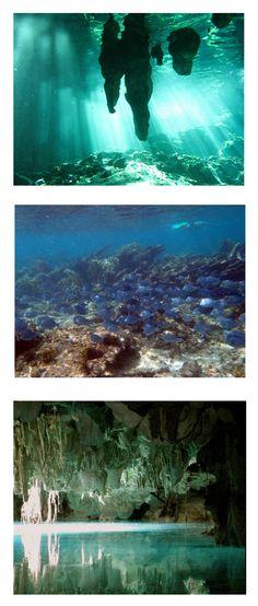 Cenotes, Snorkeling and Underground Adventure