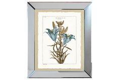 Mirror Framed Blue Botanical Print II on OneKingsLane.com