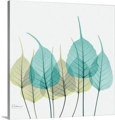 Green and #Teal Bodhi Tree Leaf X-Ray Photograph