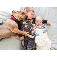 Mittagsschlaf mit Hund: Zwei Kinder und ihr liebstes Kuscheltier - BRIGITTE MOM
