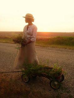Aspiring Homemaker { aspiring-homemaker.blogspot.com } An absolutely gorgeous blog.