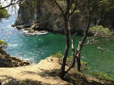 Punta Cala Canyers, Palamós Costa Brava Girona.