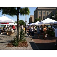 Saturday morning Farmers Market. Wilmington ,NC. Love it!