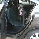 New DARK GREEN Dog Cat Pet Car Truck Seat Cover Hammock Carpet Mat - http://pets.goshoppins.com/dog-supplies/new-dark-green-dog-cat-pet-car-truck-seat-cover-hammock-carpet-mat-2/
