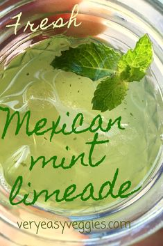 Fresh Mint Limeade ⋆ The Very Easy Veggie Garden Need a refreshing summer drink? A new twist on lemonade recipes, this smooth limeade is great. Easy Summer Cocktails, Summer Drink Recipes, Refreshing Summer Drinks, Fun Drinks, Yummy Drinks, Drinks With Mint, Recipes With Fresh Mint, Beverages, Ginger Ale