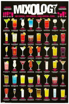 Mixology (Cocktail Recipe Chart) Art Poster Print - 24x36...
