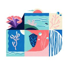 Coral reef by Jasmijn Solange Evans Coral, Kids Rugs, Evans, Illustrations, Design, Home Decor, Decoration Home, Kid Friendly Rugs, Room Decor