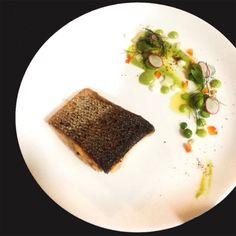 Chef aditya  salmon with pea purée, edamame & creme fresh