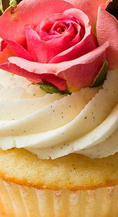 Vanilla Bean Cupcakes with Vanilla Buttercream Frosting