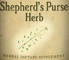 SHEPHERD'S PURSE HERB Tincture for Skin Cardiovascular System Hemostasis & Gynecological Problems Nutritional Supplement Traditional Health