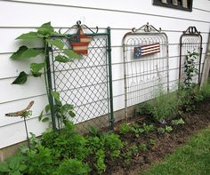 Use a collection of gates for flower trellis